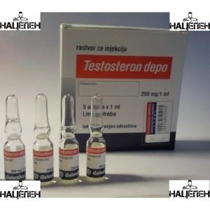 Тестостерон Енантат Testosteron Depo