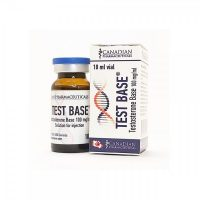 test base canada-тестостерон-база